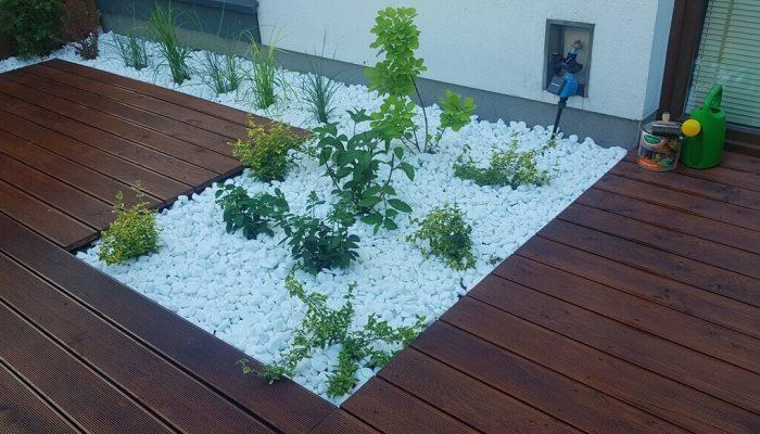 budowa tarasu i nasadzanie roślin