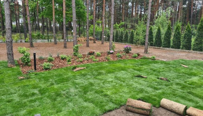 Projektowanie ogrodów Warszawa